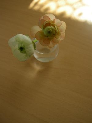 2008_2_oyasumiaisatu.jpg