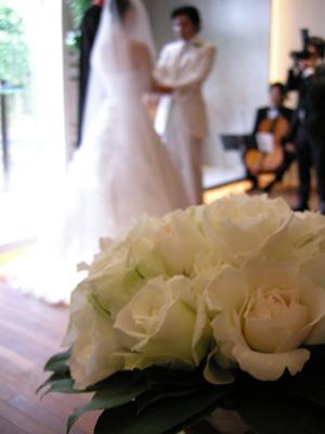2008_5_wedding1.jpg