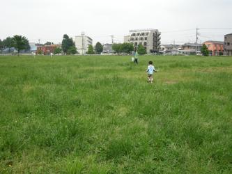2008_6_harappakouen_zenkei.jpg