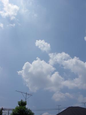 2008_7_aozora.jpg