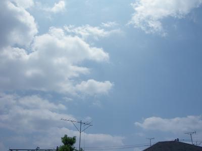 2008_7_renkyu1.jpg