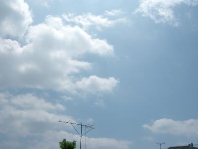 2008_8_oyasumi.jpg