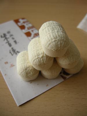 2008_8_rakugan.jpg