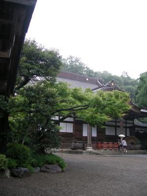2008_9_jinndaiji1.jpg