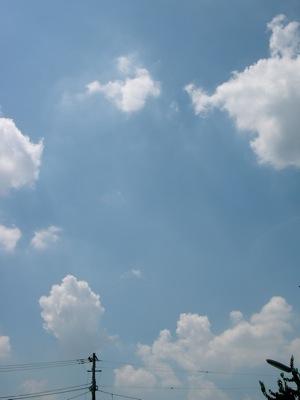 2009_9_2a.jpg